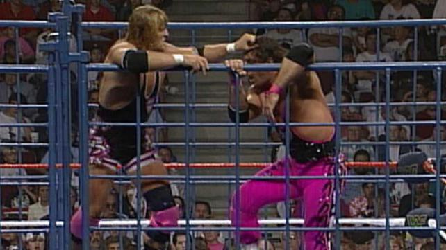 Bret Hart vs. Owen Hart SummerSlam