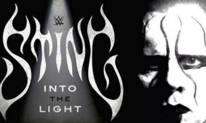 Sting Into the Light Review