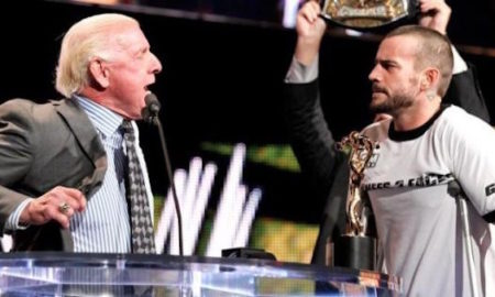 Flair comments CM Punk
